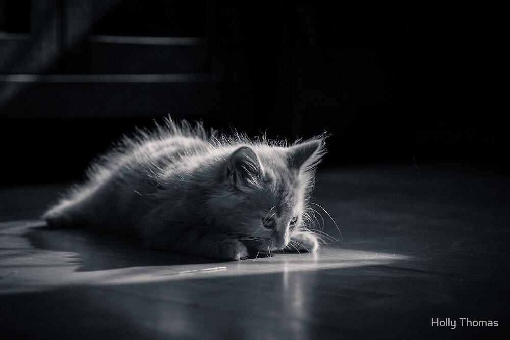 Contemplative kitten by HollyRuthven