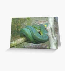 Happy Snake Greeting Card