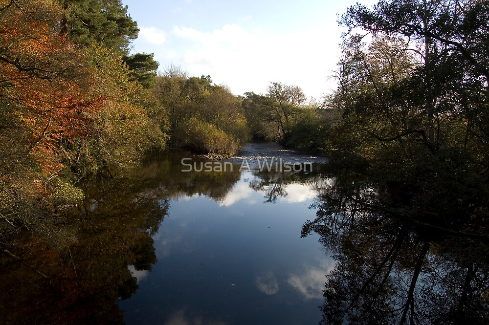 North Esk looking South by Susan A Wilson
