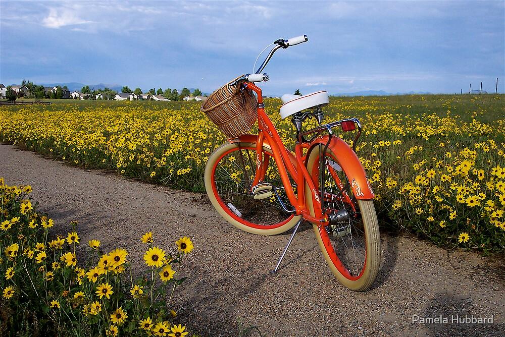 I Love My Bicycle by Pamela Hubbard