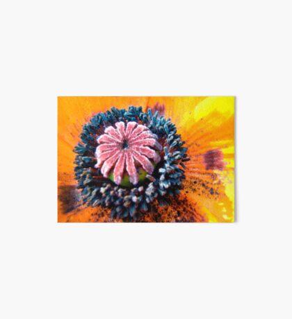 Orange Poppy Art Board
