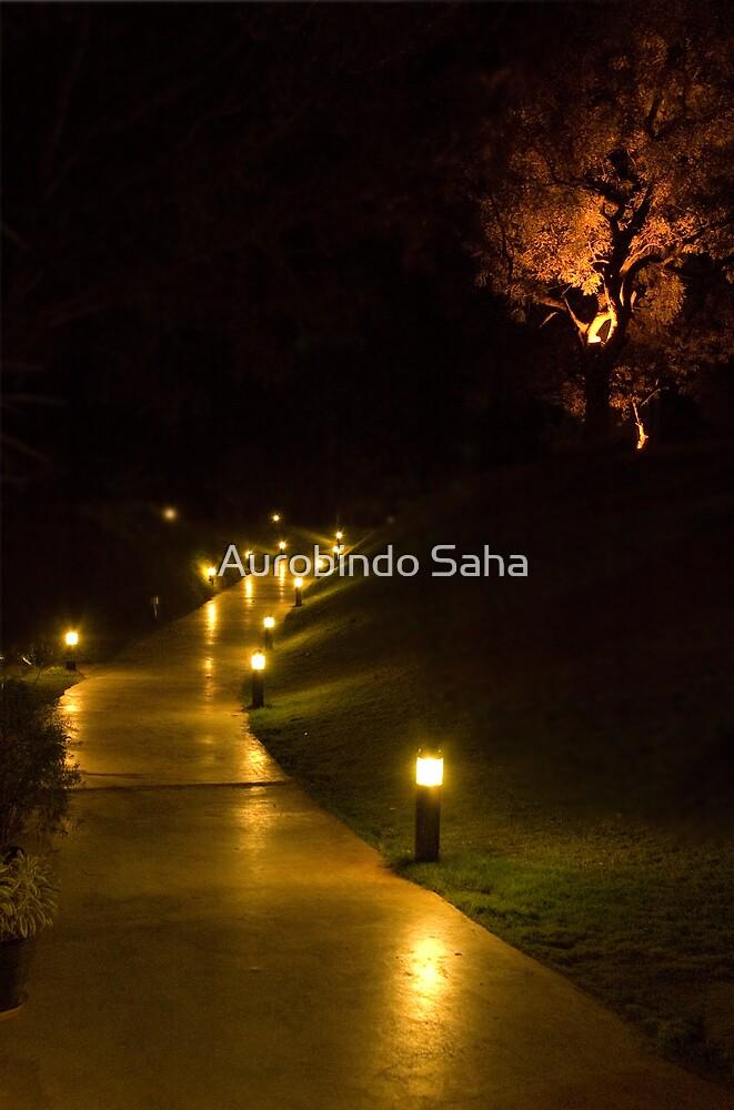 Lane by Aurobindo Saha