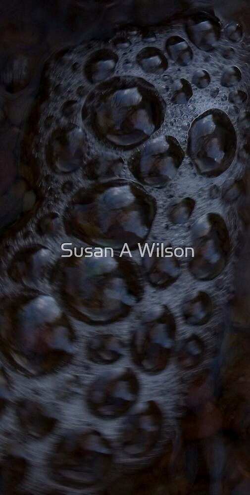 Bubbling Burn by Susan A Wilson