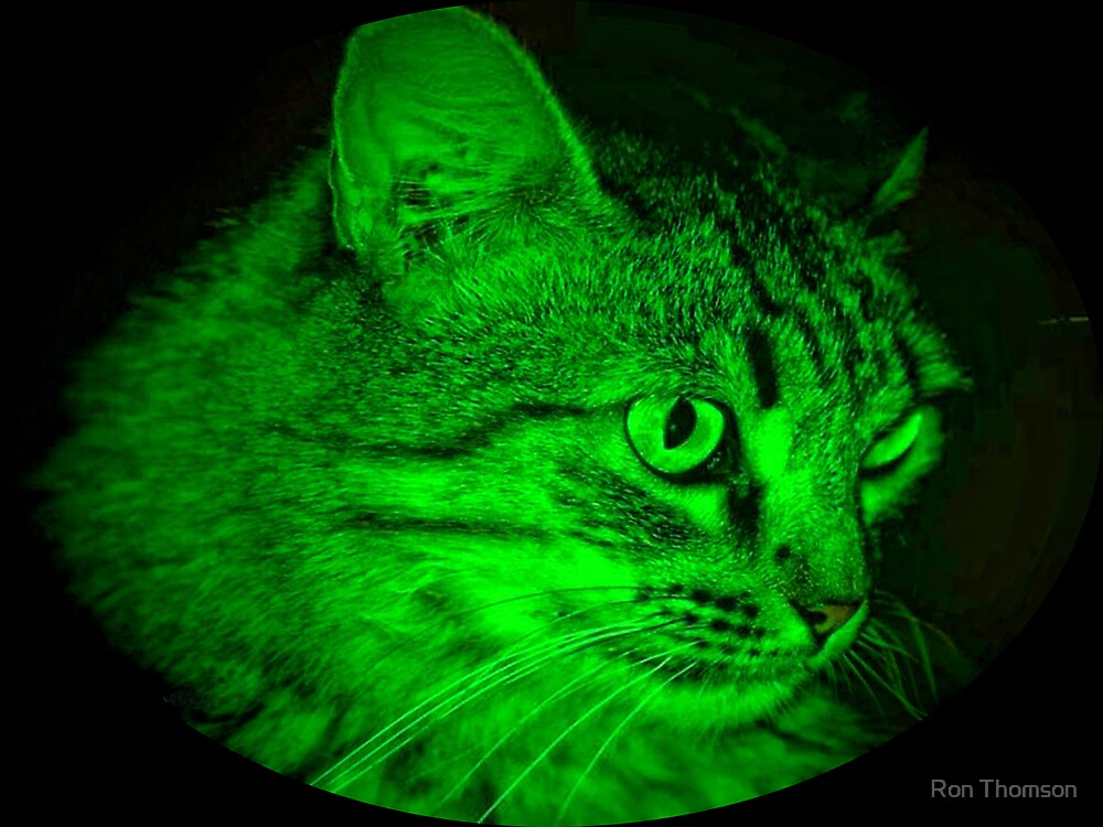 Furry in Green by Ron Thomson