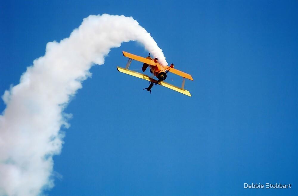 Wing Walker by Debbie Stobbart