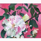Camellia and Flower Buds by Daniela Glassop