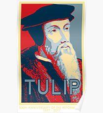 Calvin TULIP Poster