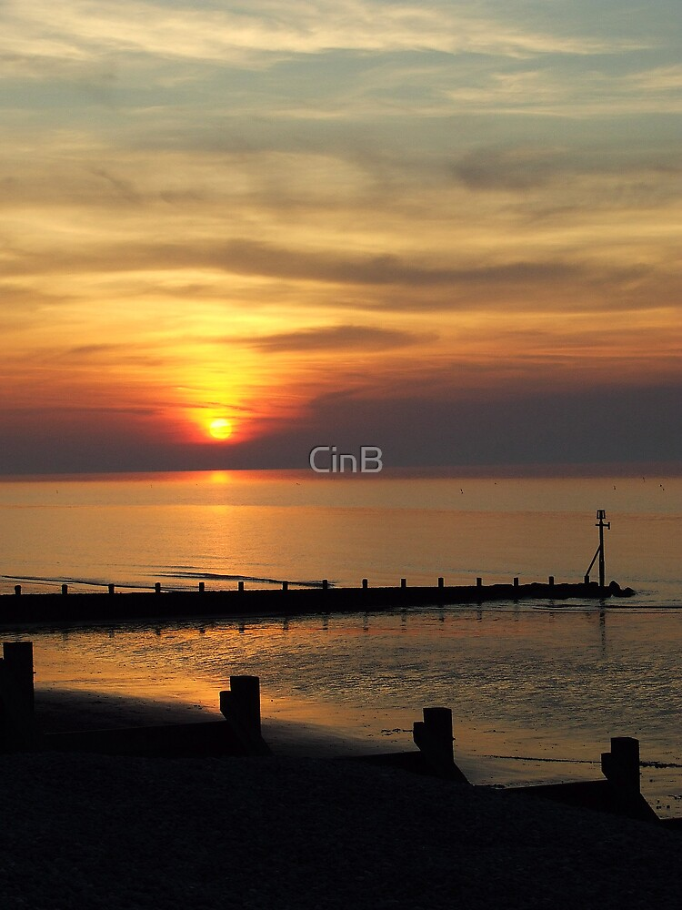 Say Goodnight And Go by CinB
