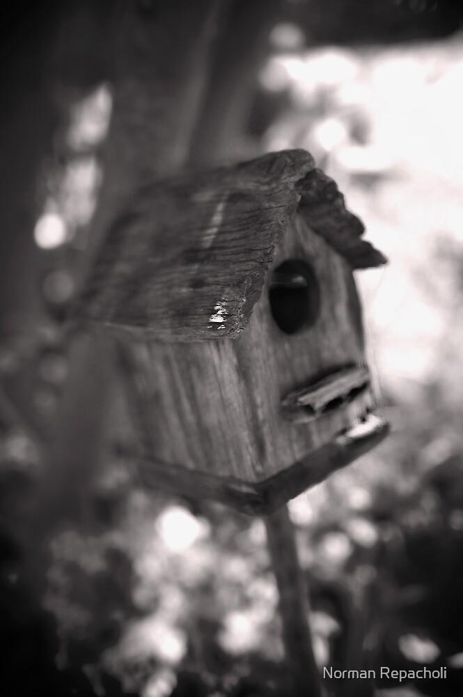 Home Sweet Home by Norman Repacholi