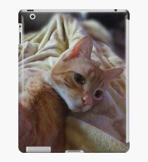 Cute Kitty iPad Case/Skin