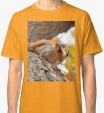 Squirrel Meme Classic T-Shirt