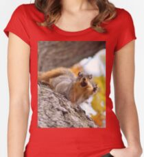 Squirrel Meme Women's Fitted Scoop T-Shirt