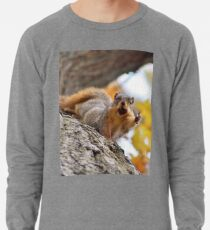 Squirrel Meme Lightweight Sweatshirt