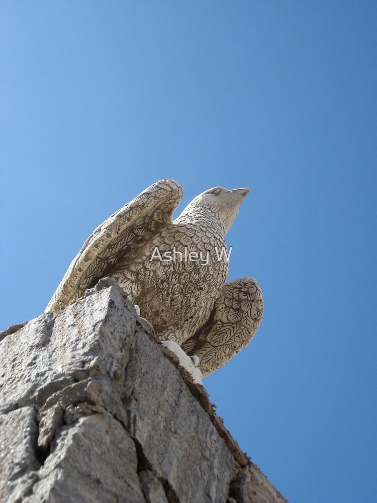 Stone Eagle by Ashley W