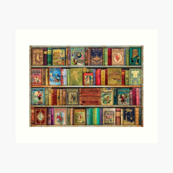 A Daydreamer's Book Shelf Art Print