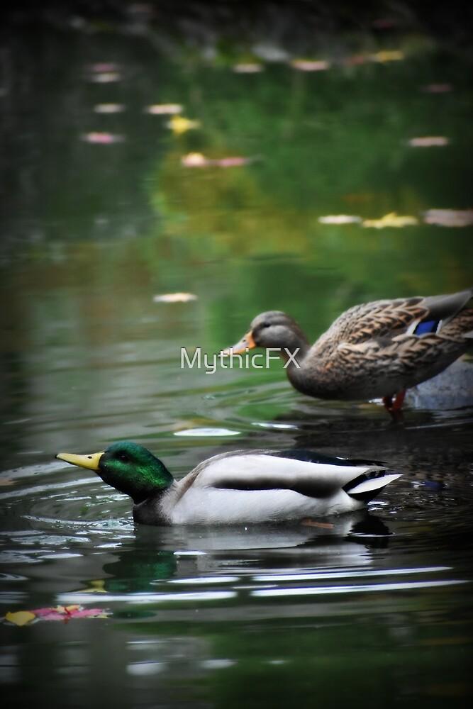 Autumn Ducks by MythicFX
