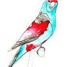 Birds in INK ~ Paradise Parrot by DMxx