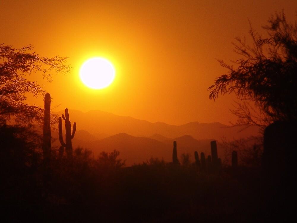 Arizona Sunset by Chris Filer