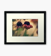 Extreme closeup of a flower with red petals  Framed Print