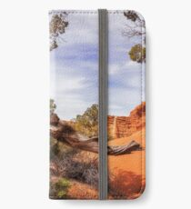 Unique desert beauty at Kodachrome Park in Utah iPhone Wallet/Case/Skin