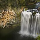 Dangar Falls - New South Wales  by Barbara Burkhardt