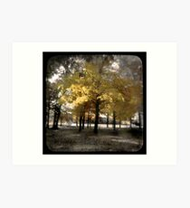Fall at Long Lake Art Print
