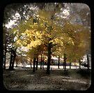 Fall at Long Lake by Karri Klawiter