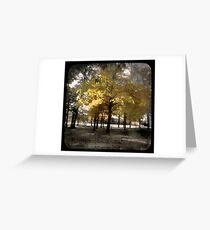 Fall at Long Lake Greeting Card