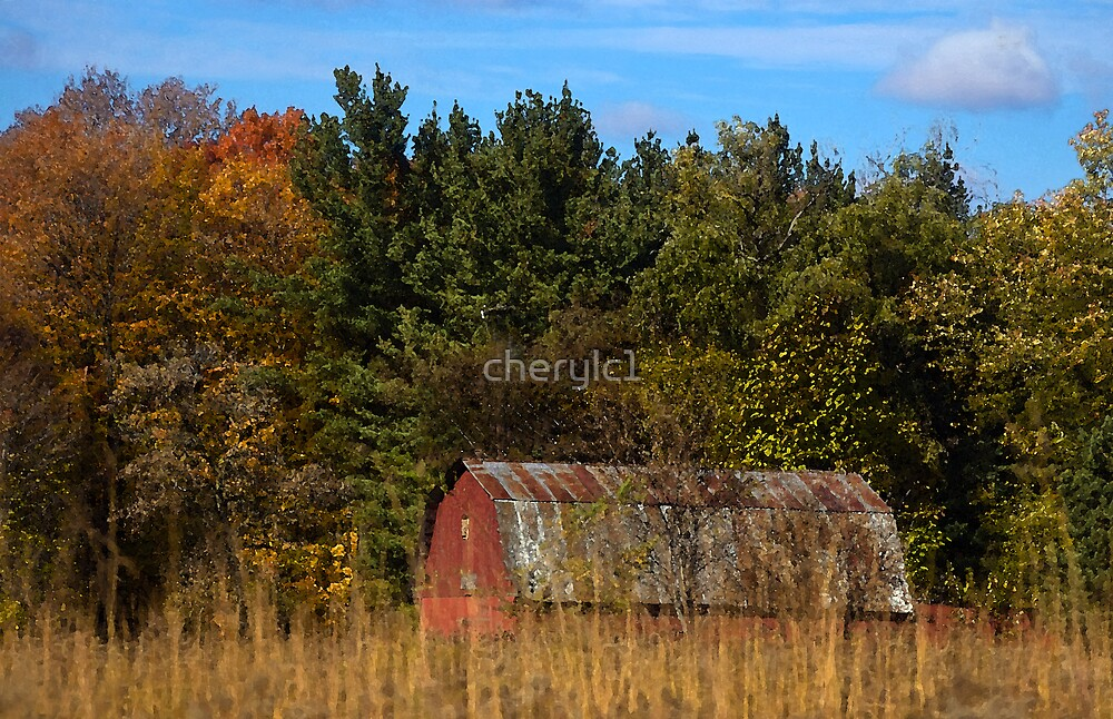 Nature Center Barn by cherylc1