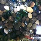 Aquarium Gems in the Turtle Tank by silverdragon