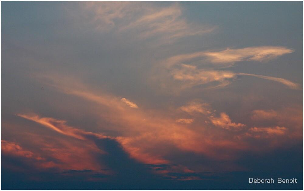 Evening Pink Swirl by Deborah  Benoit