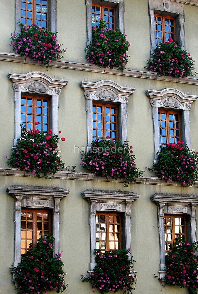 Nine Windows by hans p olsen