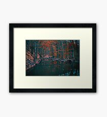 Scenery of autumn leaves forest and stream Framed Print