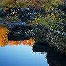 Still Autumn by Richard G Witham