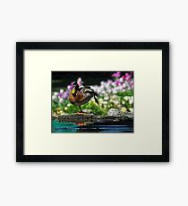 Morning Tai Chi Framed Print