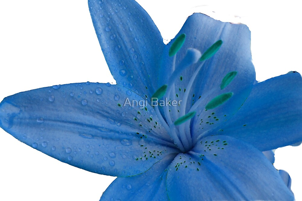 Blue by Angi Baker