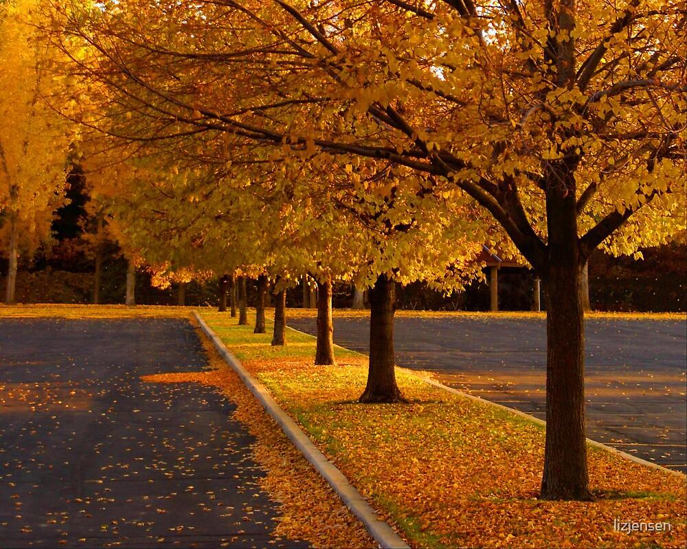 Turning Leaves by lizjensen