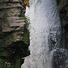 High Falls #4 by Tammy F