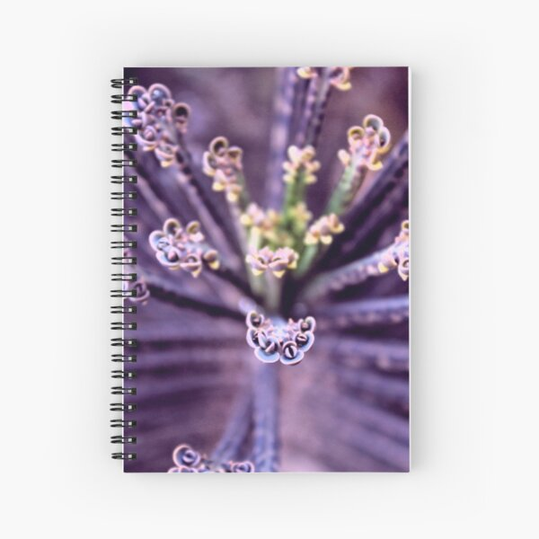 Purple Euphorbia in Detail  Spiral Notebook