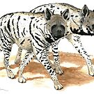 Striped Hyenas by JedTaylor