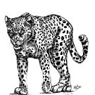 Leopard - Big 5 Series by pennies4eles
