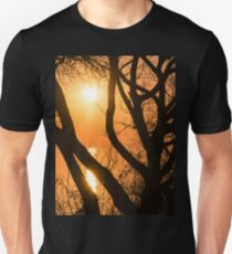 Gorgeous Morning Through the Tree Screen Unisex T-Shirt