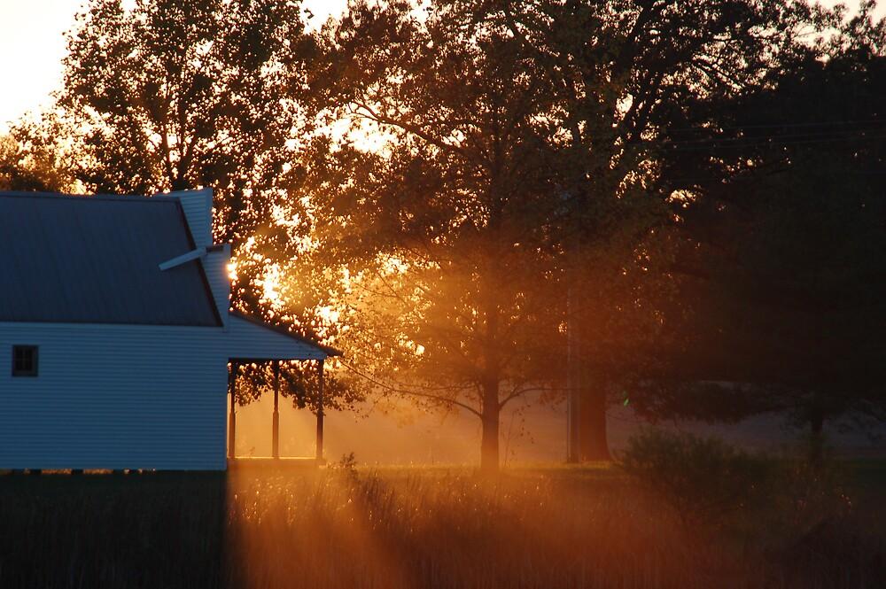 Sunny Sunset by kentuckyblueman