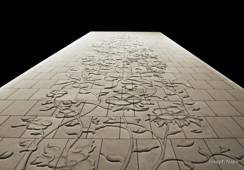 The Wall by Joseph Najm