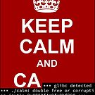 Keep calm and... SegFault! by Ange Albertini