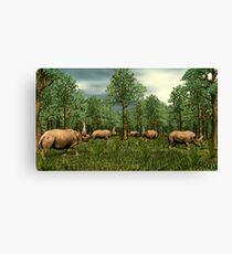 Elasmotherium Canvas Print