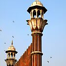 Jama Masjid of Delhi by Bev Pascoe
