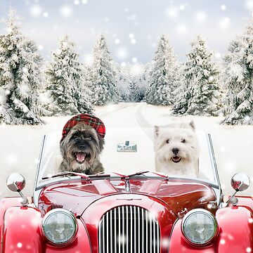 Two dogs driving a car in winter by ArdeaOnline