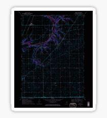 USGS TOPO Map Illinois IL Serena 308713 1970 24000 Inverted Sticker