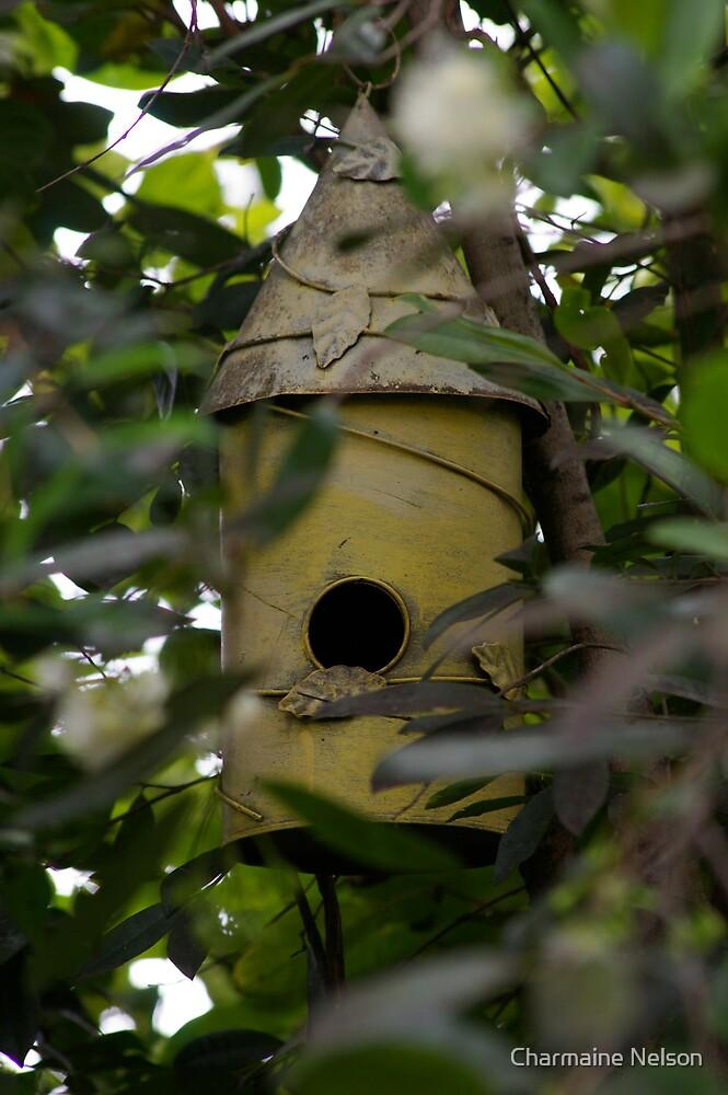 Bird Hideaway Haven by Charmaine Nelson